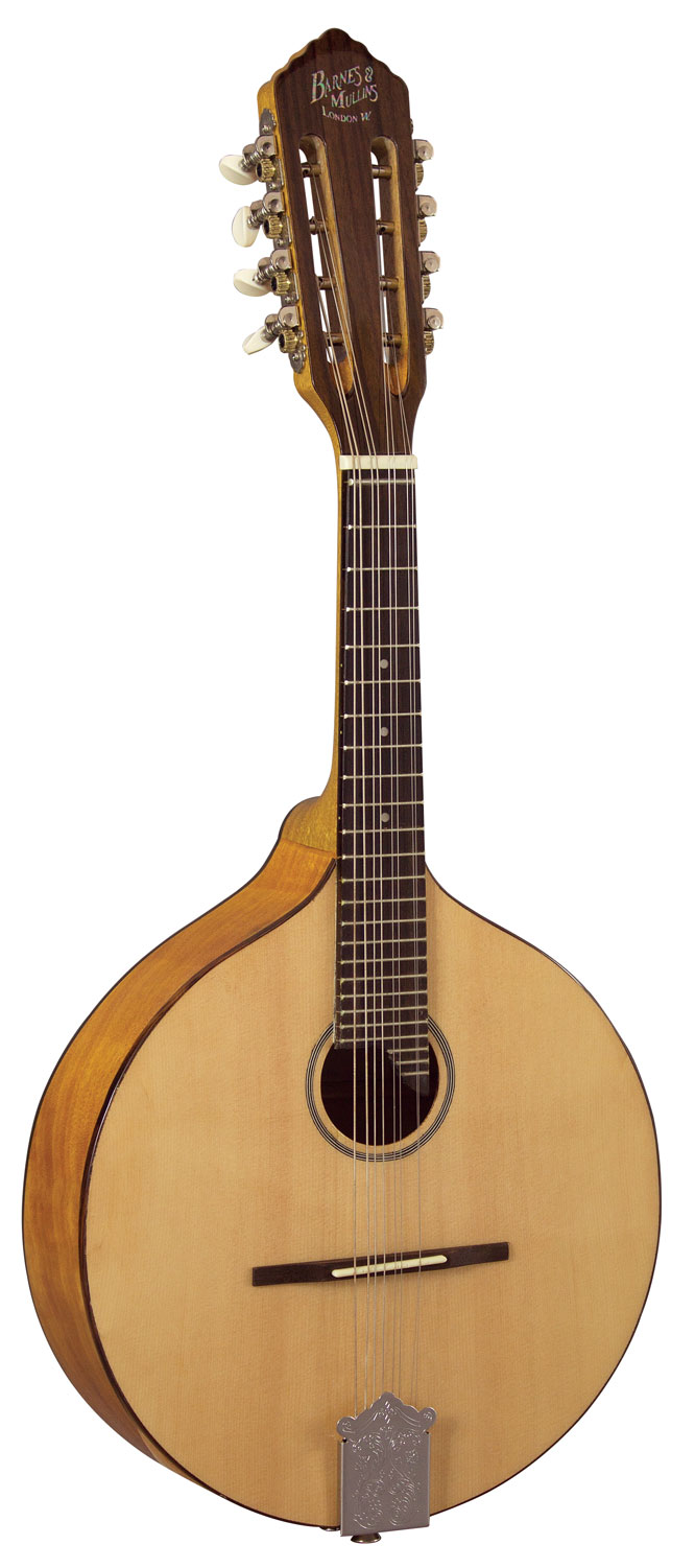 Barnes and Mullins Mandolin - Abbott Model Flat Back