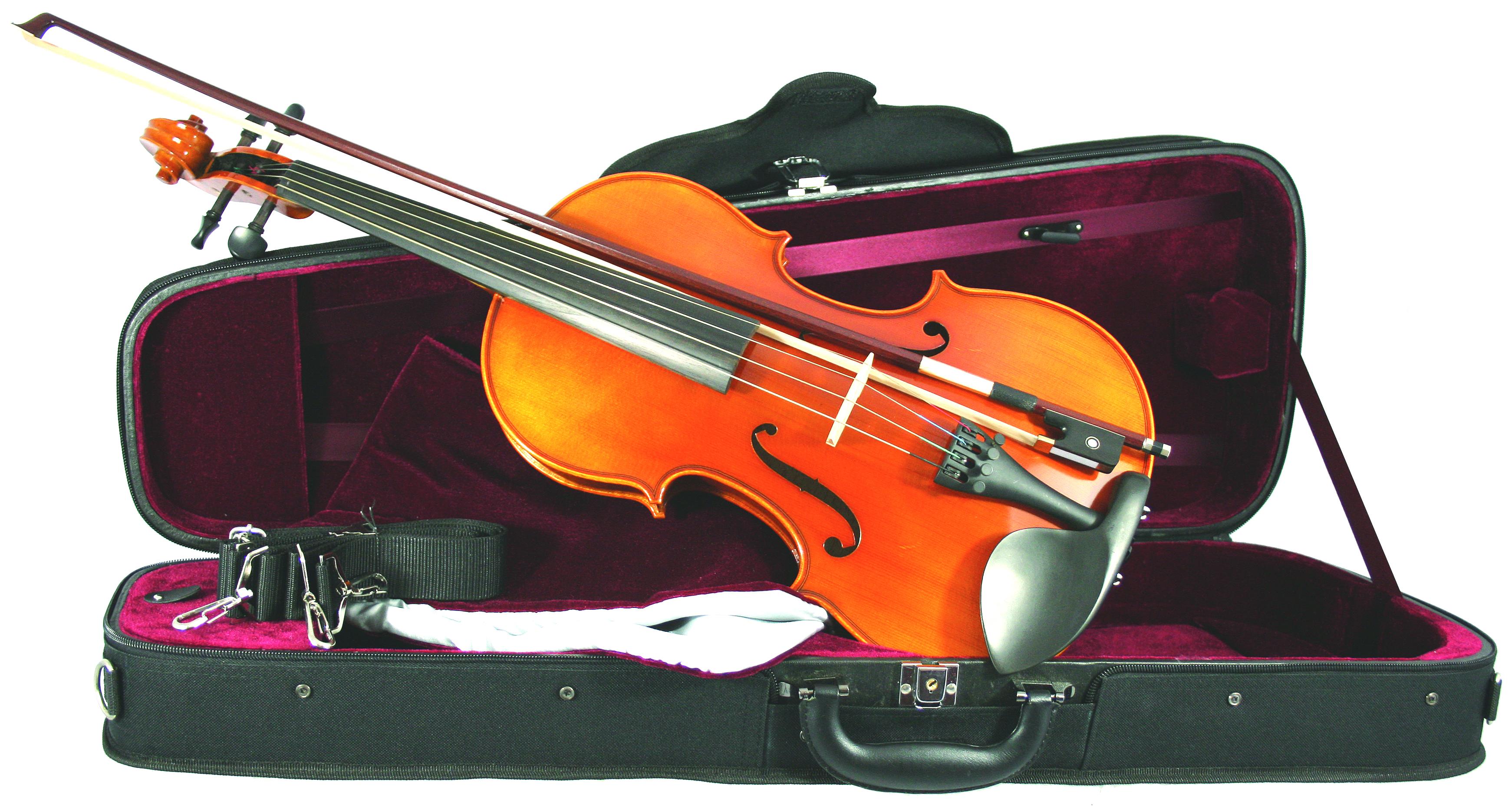 Westbury Viola O/F 16.5